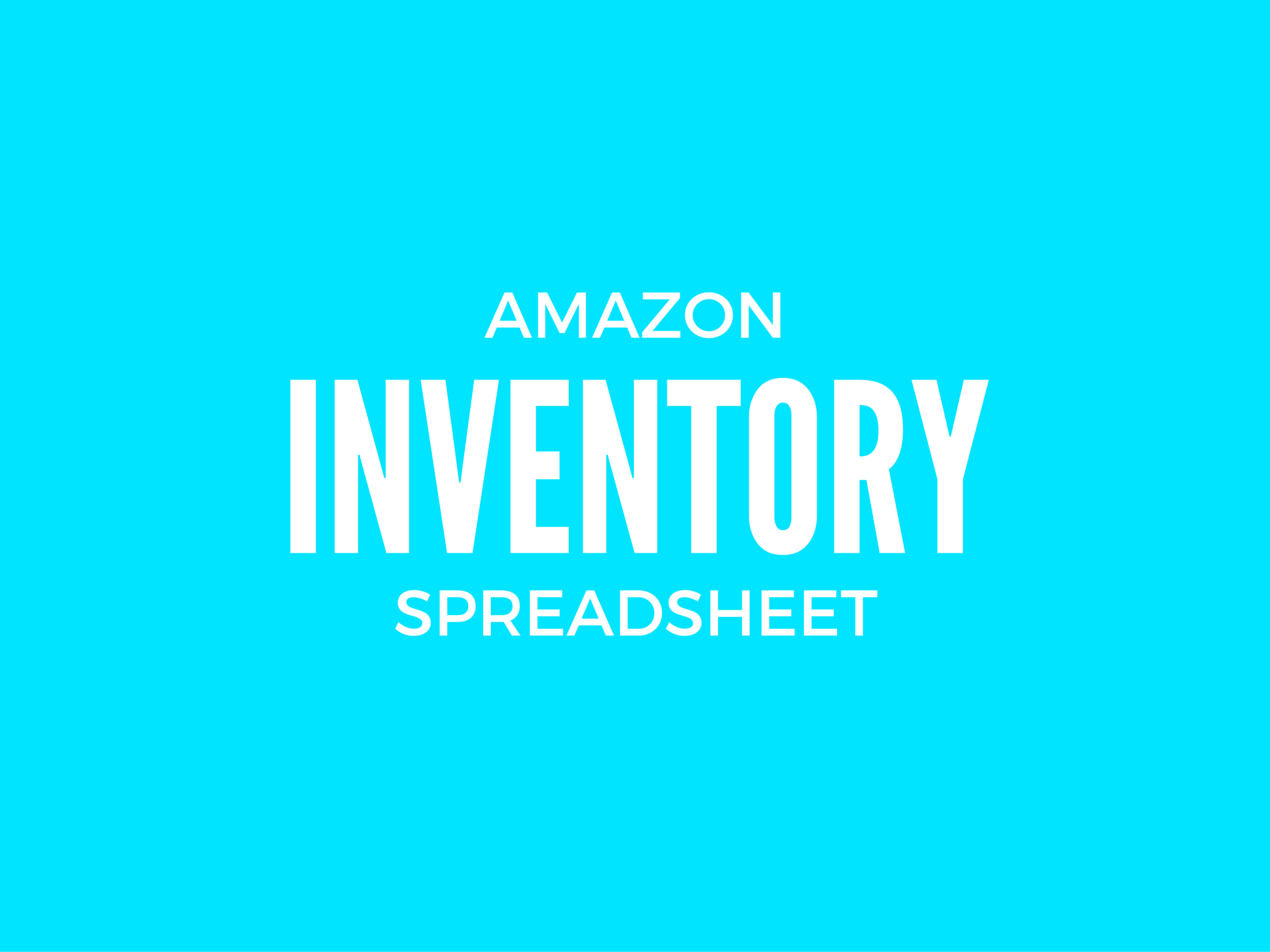 Amazon Inventory Spreadsheet (add on)